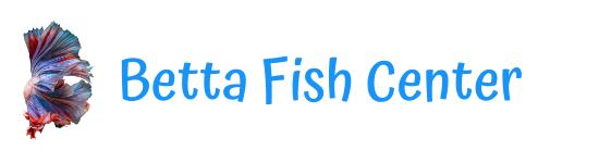 Betta Fish Center